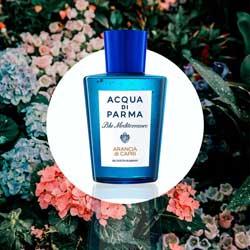 Perfume-Arancia-di-capri