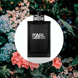Perfume-Karl-Lagarfeld