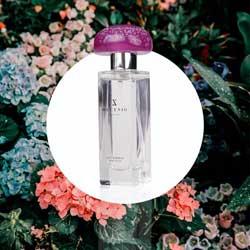 Perfume-Violet-Coral